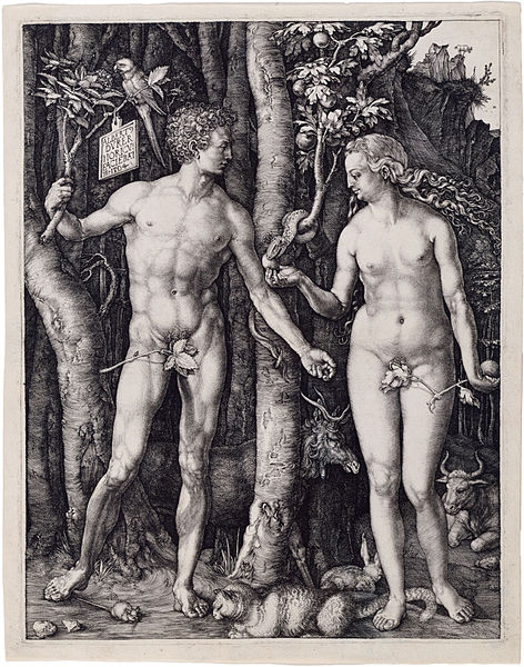 File:Albrecht Dürer, Adam and Eve, 1504, Engraving.jpg
