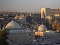 Aleppo (Halab), Blick auf die Altstadt vom Hotel Mirage Palace (vorm. Amir Palace) (37819106725).jpg