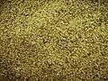 Alfalfa seeds.jpg
