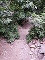 Algerie Blida Chiffa Source de Singes (40).jpg