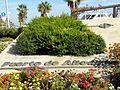 Alicante - panoramio (90).jpg