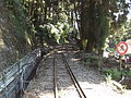 Alishan railway 2014 08.JPG