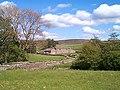 Aller Gill, Weardale, Co. Durham - geograph.org.uk - 4225.jpg