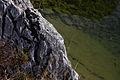 Altausseer See 78919 2014-11-15.JPG
