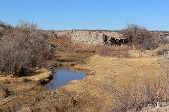 Amargosa River - Amargosa River at Tecopa, California