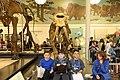 American Museum of Natural History, AMNH, Manhattan, New York, New York City, , United States, America, , USA, US (50262016172).jpg