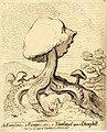 An excrescence;-a fungus;-alias-a toad-stool upon a dung-hill. (BM 1851,0901.568).jpg