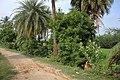 Andiarpalayam LAKE SIDE - panoramio.jpg