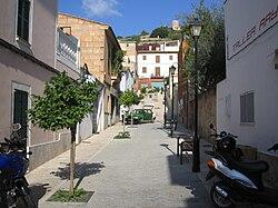 Palma Mallorca Walking Dogs Wanted