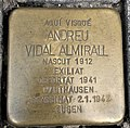 Andreu Vidal IMG 20210228 115339.jpg
