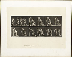 Animal locomotion. Plate 452 (Boston Public Library).jpg