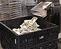 Anne Arundel Meal Packaging Distribution (49833973711).jpg