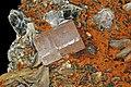 Apatite-(CaF), muscovite 4.jpg