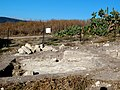 Archaeolgigal execavetion of the city site of Beit Shearim since 2014 (11).jpg