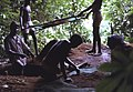Archaeological excavations at Kamabai Rock Shelter, Sierra Leone (West Africa) (432439442).jpg