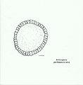 Arthropod periblastula larva.jpg