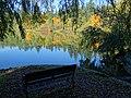 At Lost Lagoon - Stanley Park - Vancouver - BC - Canada - 03 (37264130704) (2).jpg
