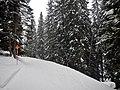 Auslauf der Skiroute 37 - panoramio.jpg