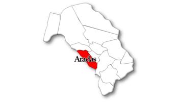 Aradas
