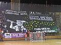 Békéscsaba Előre NKSE - DVSC NBI női kézilabdameccs a Városi Sportcsarnokban, a hazai ultrák koreográfiája - panoramio.jpg