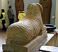 Back view. Ram sphinx of king Taharqa (Taharqo), 25th (Kushite) Dynasty, 690-664 BCE. From Kawa, Sudan. Granitic gneiss sphinx representing Amun protecting the king. British Museum.jpg