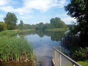 Backwell - Backwell lake