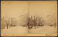 Bacon Street from Hill, Biddeford, by Sawtelle, E. E. (Edward E.).png
