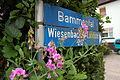 Bammental - Wiesenbacher Landstrasse 28.JPG