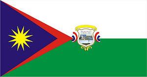 Departments of Paraguay - Image: Bandera del Departamento de Cordillera