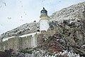 Bass Rock Lighthouse.jpg