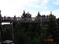 Baumkronenweg Sauwald 20060815 027.jpg