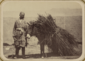 Bazaar Types. Grass Vendor WDL10703.png