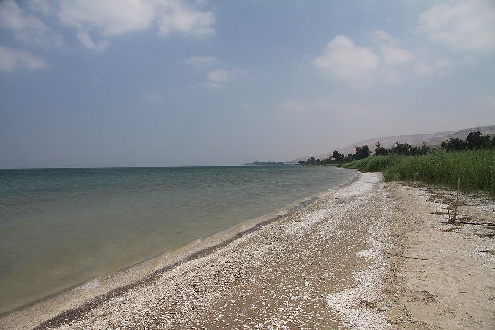 Beach of Sea of Galilee in summer 2011