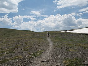 Bear & Bill - Hurricane Pass (Heading Towards Alaskan Basin) - Jedediah Smith Wilderness Targhee National Forest - Jackson, WY (859871233).jpg