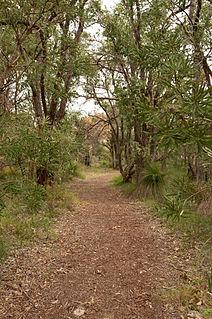 Beeliar Wetlands Wetlands in Western Australia