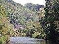 Beim 366 km langen Neckartalradweg, Neckar zwischen Sulz und Horb - panoramio.jpg