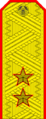 Belarus MIA—02 Lieutenant General rank insignia (Golden).png