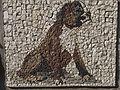 Belgrade zoo mosaic0153.JPG