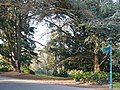Belle Vue Park - geograph.org.uk - 705342.jpg