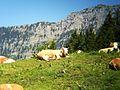 Berchtesgaden IMG 4991.jpg