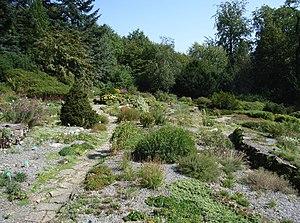 Alpine garden - The alpinum in Botanischer Garten Bielefeld, Germany