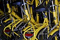 Bikes (204529360).jpg