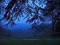 Bleu nuit sur Port-Royal des Champs.JPG