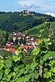 Blick auf Durbach und Schloss Staufenberg. 02.jpg