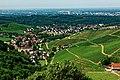 Blick vom Schloss Staufenberg auf die Weinlandschaft rund um Durbach. 09.jpg