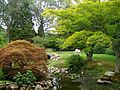 Blithewold Mansion - Water Garden.jpg