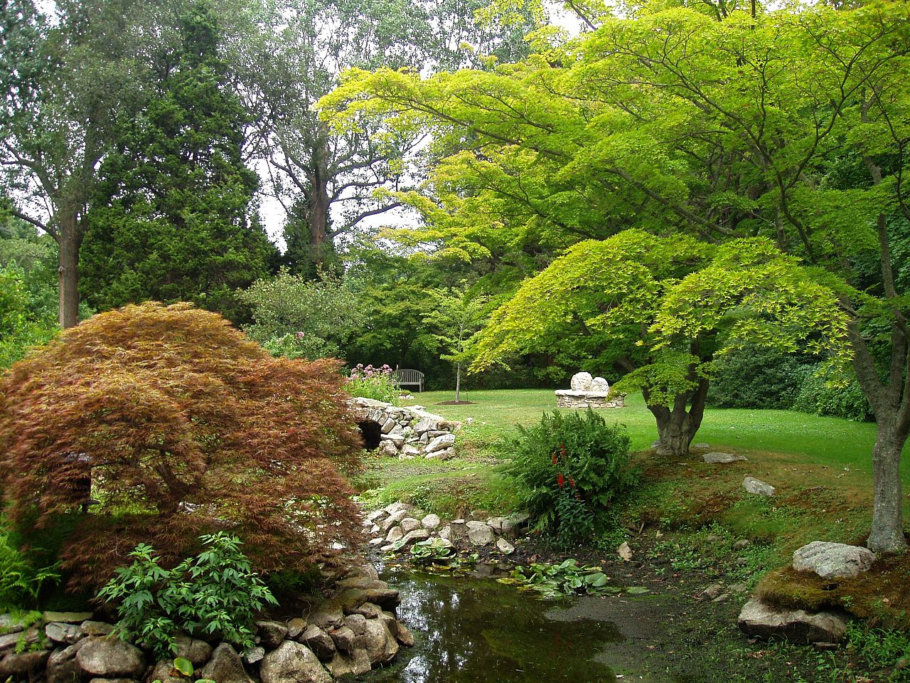 Green Room Gardens Needingworth