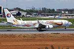 Boeing 737-800 (4).jpg