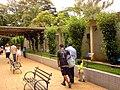 Boulevard with birds - Zoo Quinzinho de Barros at Sorocaba - SP - Brazil.jpg