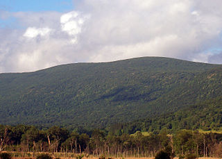 Brace Mountain mountain in United States of America